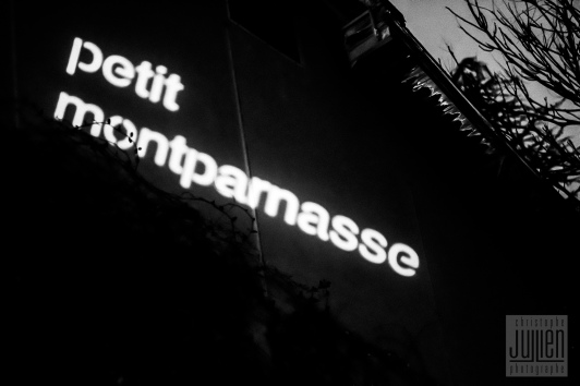 Théâtre Petit Montparnasse - Copyright Christophe JuLLien